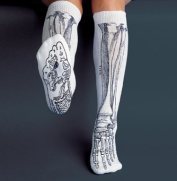 https://www.amazon.com/Anatomical-Chart-Co-Socks-White/dp/B00992YUQU/ref=sr_1_6?ie=UTF8&qid=1532278113&sr=8-6&keywords=anatomy+socks
