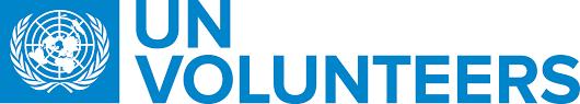 U.N. online volunteer