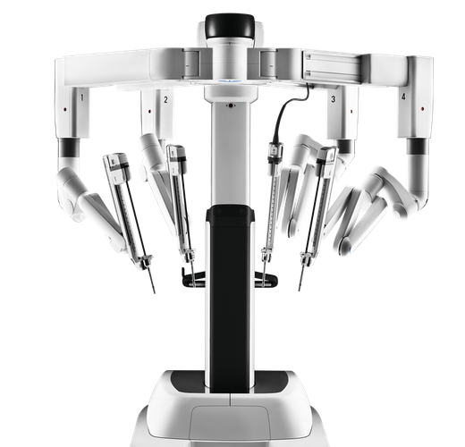 The robot behind the 'grape surgery'picture.